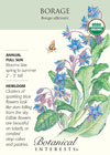 Borage Organic HEIRLOOM Seeds