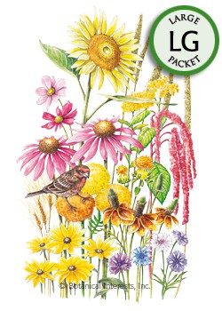Flower Mix Songbird Delight Seeds (LG)