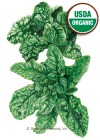 Spinach Bloomsdale Organic HEIRLOOM Seeds