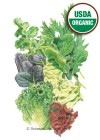 Lettuce Mesclun Chef's Medley Organic Seeds