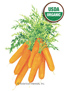 Carrot Baby Little Finger Organic HEIRLOOM Seeds